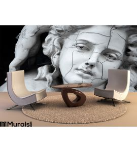 Cracked Face Female Greek Sculpture Wall Mural Wall art Wall decor