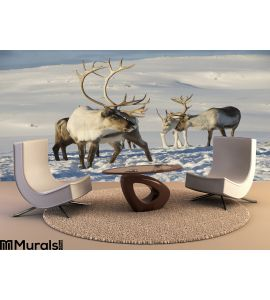 Reindeers Natural Environment Tromso Region Northern Norway Wall Mural Wall art Wall decor