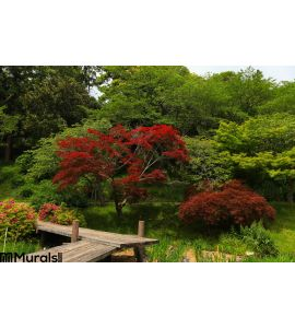Japanese Garden Wall Mural Wall art Wall decor