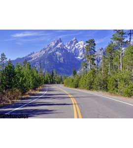 Driving in the Teton Range, Rocky Mountains, Wyoming, USA. Outdoors, jackson. Wall Mural Wall art Wall decor