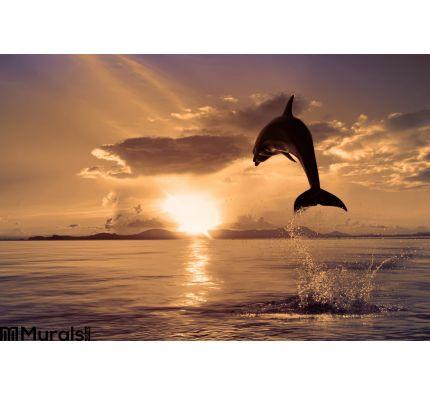 Beautiful Dolphin Jumping Shining Water Wall Mural Wall art Wall decor