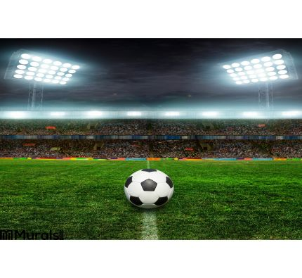 Soccer Bal Football Wall Mural