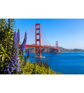 Golden Gate Bridge San Francisco Wall Mural