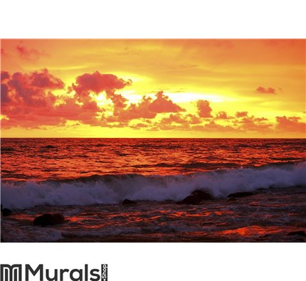 Sunset On The Ocean 2 Wall Mural Wall art Wall decor