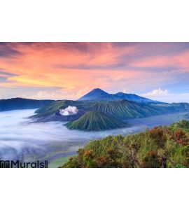 Bromo volcano at sunrise, East Java, , Indonesia Wall Mural Wall art Wall decor