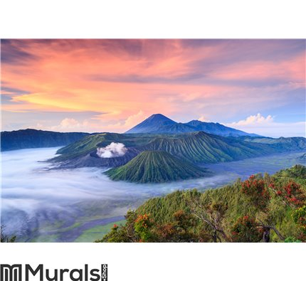 Bromo volcano at sunrise, East Java, , Indonesia Wall Mural Wall art Wall decor