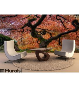 Japanese Maple Tree Wall Mural Wall art Wall decor