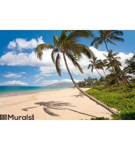 Maui hawaii beach Wall Mural