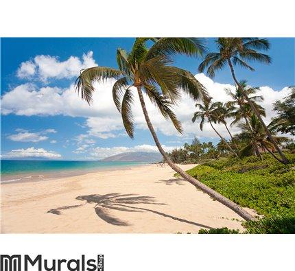 Maui hawaii beach Wall Mural