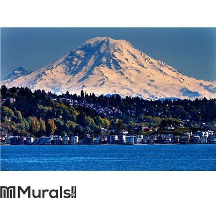 Mount Rainier Puget Sound North Seattle Wall Mural Wall art Wall decor