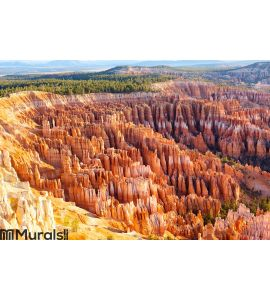 Bryce Canyon Wall Mural Wall art Wall decor
