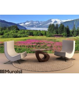 Juneau,capital of Alaska Wall Mural Wall art Wall decor