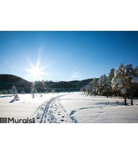 Winter landscape Wall Mural Wall art Wall decor