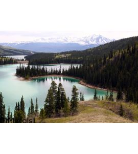 Emerald Lake, Yukon Canada Wall Mural Wall art Wall decor