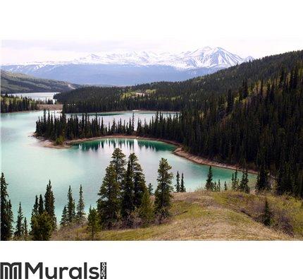 Emerald Lake, Yukon Canada Wall Mural Wall art Wall decor