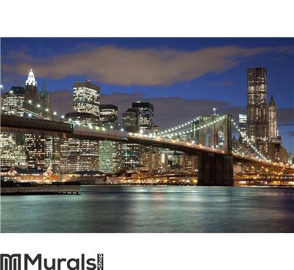 New York City at night Wall Mural Wall art Wall decor