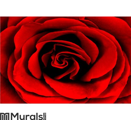 Rose Wall Mural Wall Tapestry tapestries
