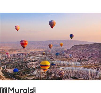 Hot air balloon flying over Cappadocia Turkey Wall Mural Wall Tapestry tapestries