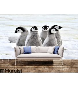 Emperor Penguin Wall Mural Wall Tapestry tapestries