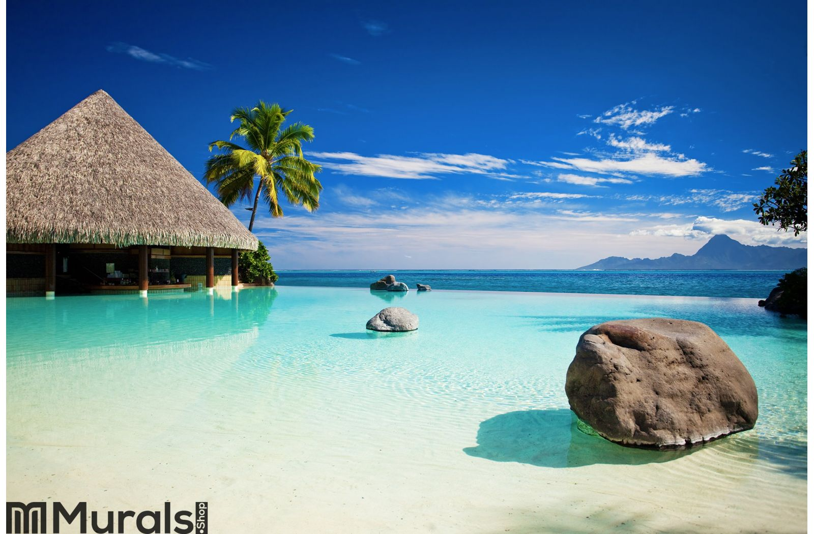 Infinity pool with artificial beach and ocean wall mural amipublicfo Gallery