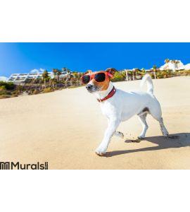 Dog running at beach Wall Mural