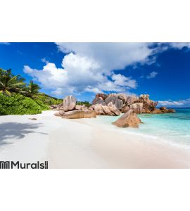 Coco beach in seychelles Wall Mural