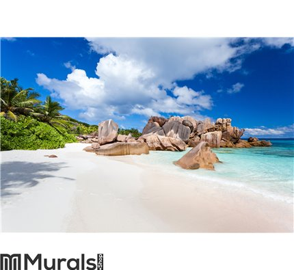 Coco beach in seychelles Wall Mural Wall Tapestry tapestries