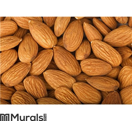 Almond Wall Mural Wall Tapestry tapestries