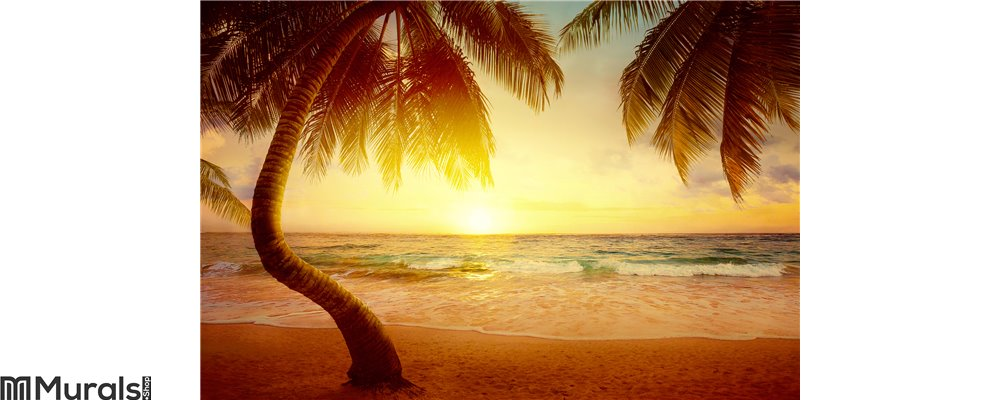 Art Beautiful sunrise over the tropical beach Wall Mural
