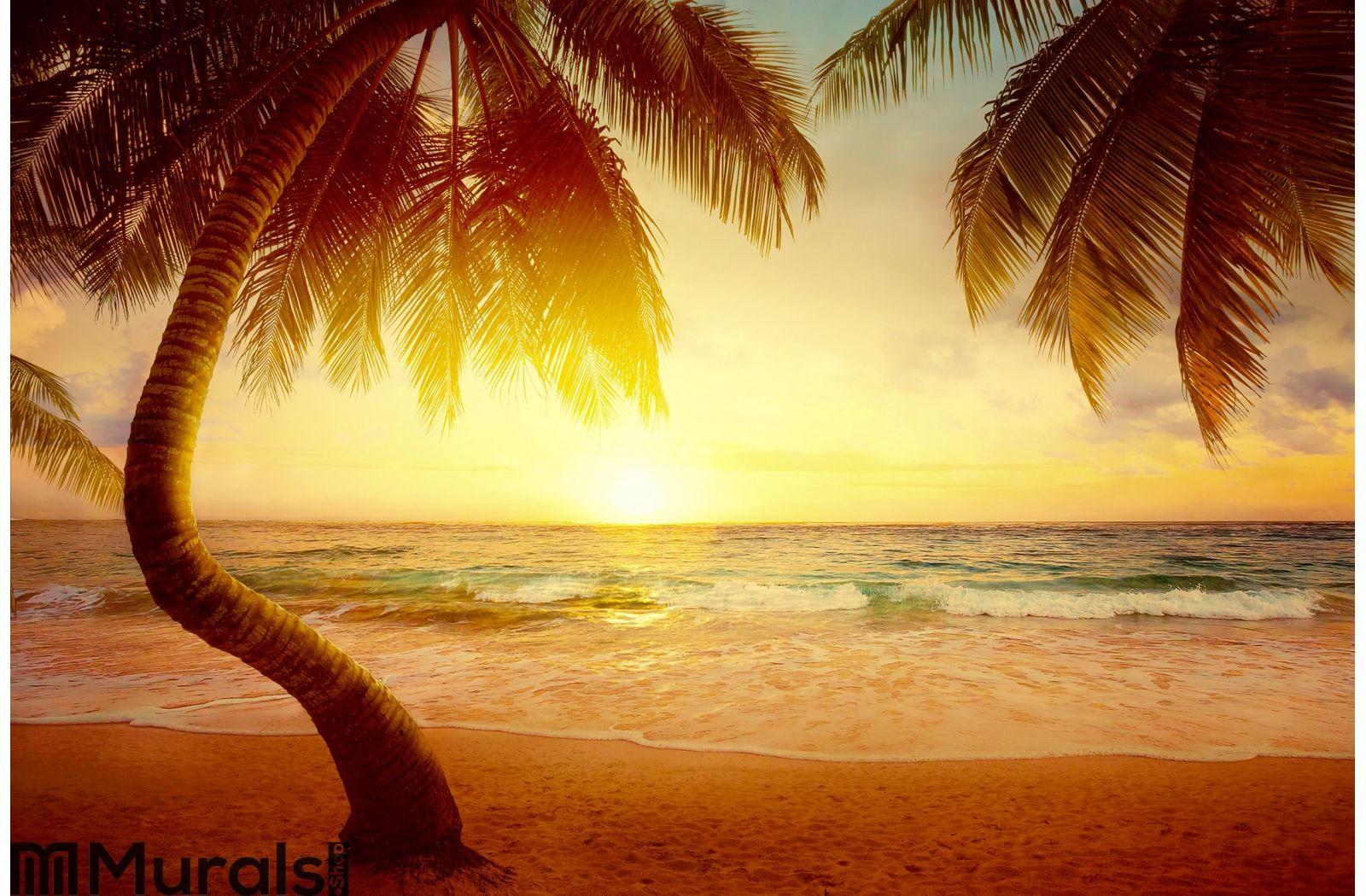 Art Beautiful sunrise over the tropical beach Wall Mural