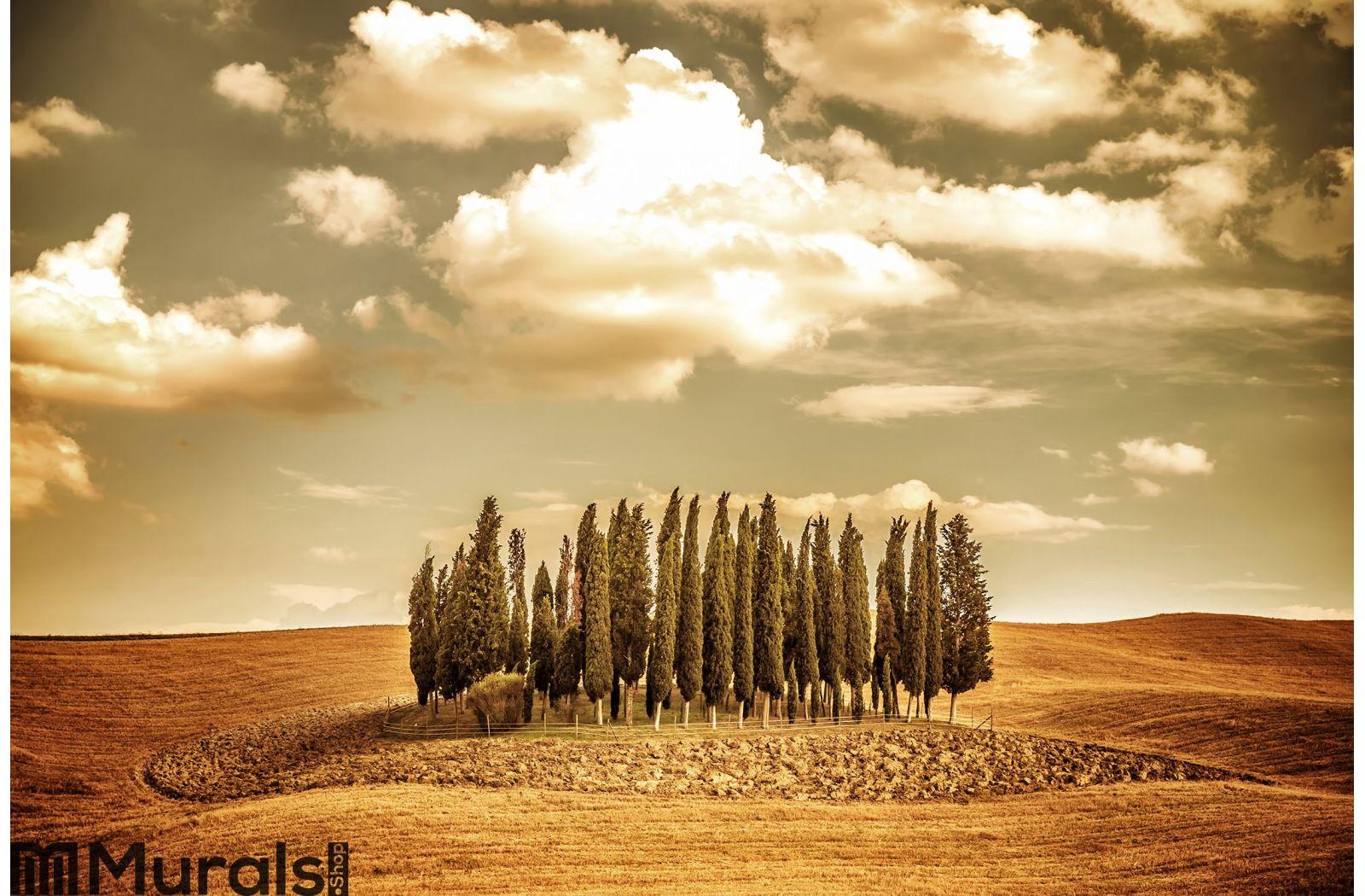 beautiful autumn vinatge landscape wall mural