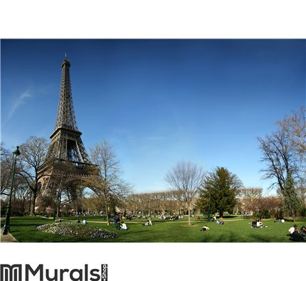 Beautiful Eifel tower Wall Mural Wall art Wall decor