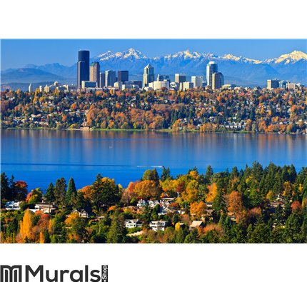 Gorgeous autumn scenery @ Bellevue Washington Wall Mural Wall art Wall decor
