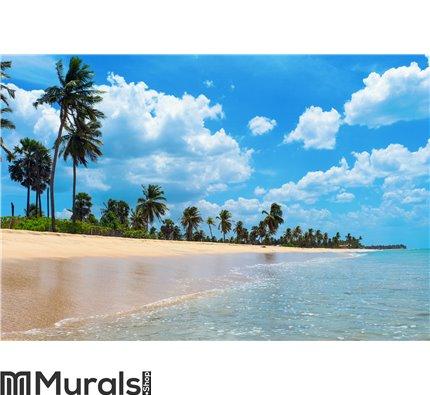 Nilaveli beach beautiful Wall Mural Wall art Wall decor
