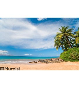 Plam tree beach hawaii Wall Mural