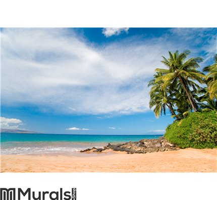 Plam tree beach hawaii Wall Mural Wall art Wall decor