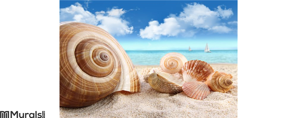 Seashells on the beach Wall Mural