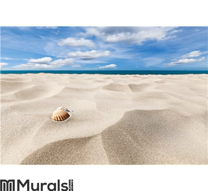 Shells on a beach Wall Mural Wall art Wall decor