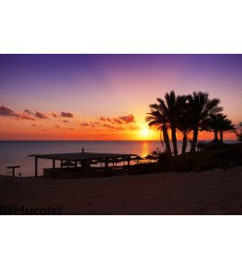Sunset in Marsa Alam, Egypt Wall Mural