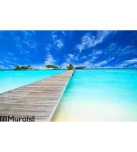 Amazing island and pristine beach in Maldives Wall Mural