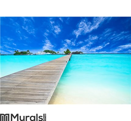 Amazing island and pristine beach in Maldives Wall Mural Wall art Wall decor