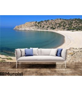 Beach at Samothraki island in Greece Wall Mural