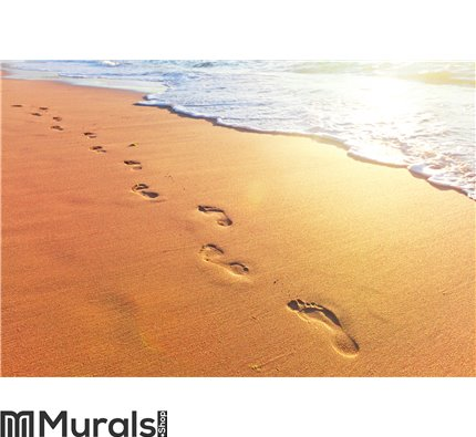 Beach, wave and footsteps at sunset time Wall Mural Wall art Wall decor