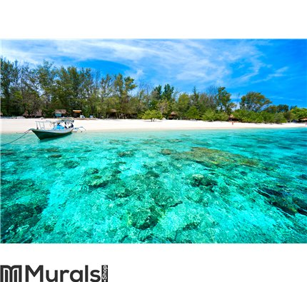 Beautiful sea at Gili Meno, Indonesia Wall Mural Wall art Wall decor