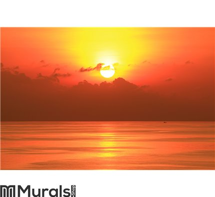 Beautiful Sun Set in The Middle of The Ocean Wall Mural Wall art Wall decor