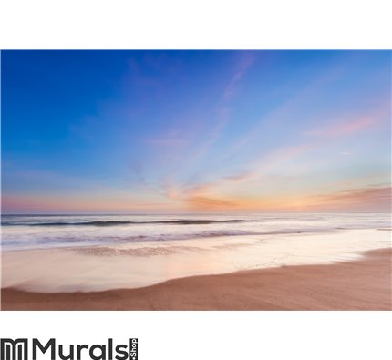 Beautiful sunset in southern california beach Wall Mural Wall art Wall decor