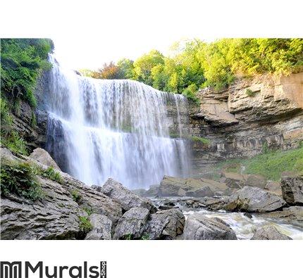 Beautiful WaterFalls Wall Mural Wall art Wall decor
