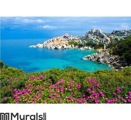Capo Testa - Beautiful coast of sardinia Wall Mural Wall art Wall decor