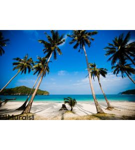 Coconut palms on the beach Wall Mural