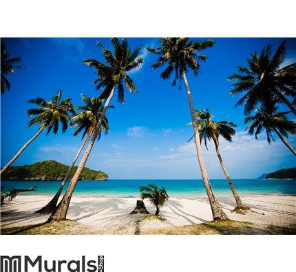 Coconut palms on the beach Wall Mural